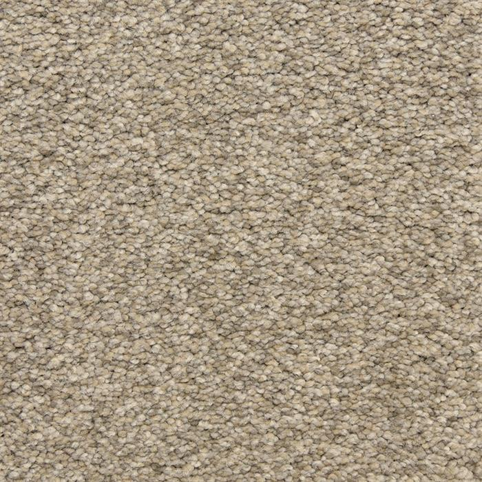 Masland Carpets Amp Rugs Staccato